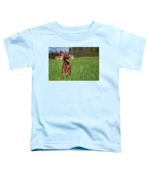Happy Setter Toddler T-Shirt