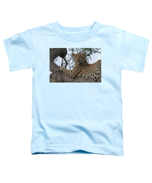 A Leopard Gazes From A Tree Toddler T-Shirt
