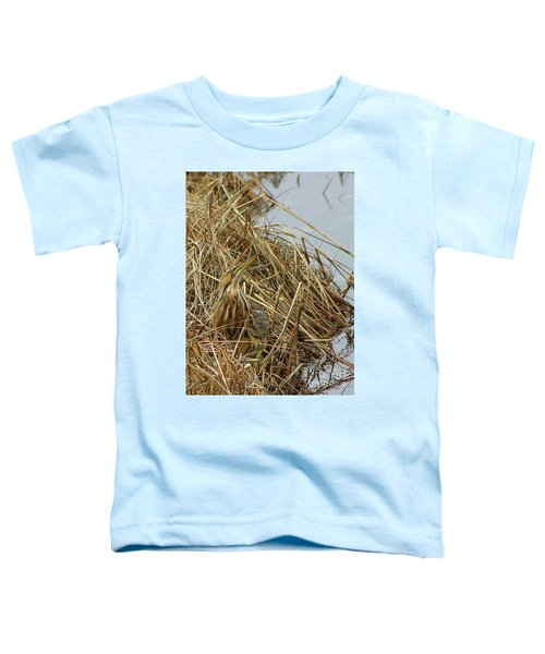 American Bittern Toddler T-Shirt