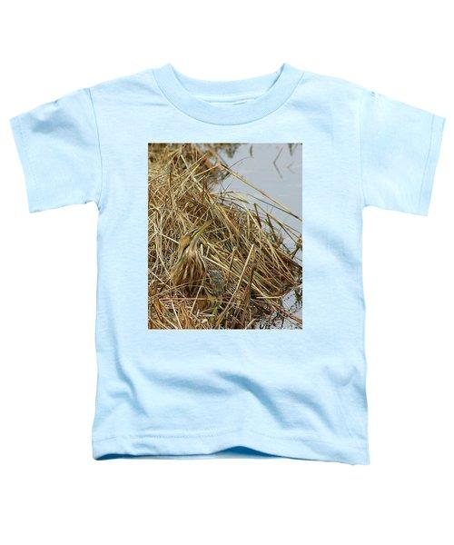 American Bittern Toddler T-Shirt