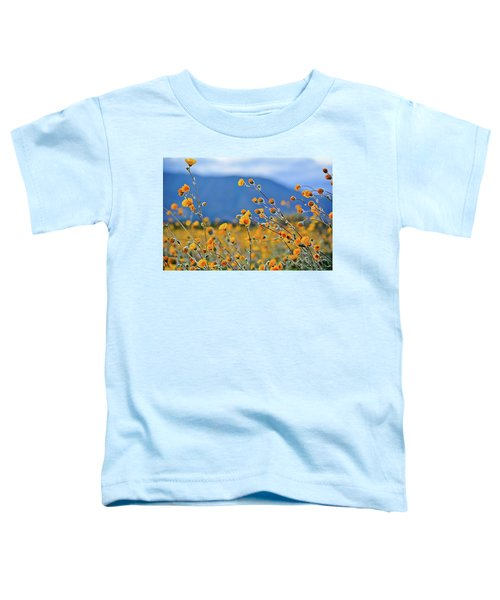 Anza Borrego Wild Desert Sunflowers Toddler T-Shirt