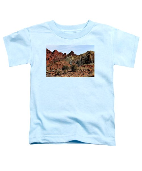 Back Country In Moab Toddler T-Shirt