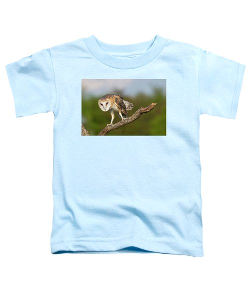 Barn Owl 5151801 Toddler T-Shirt