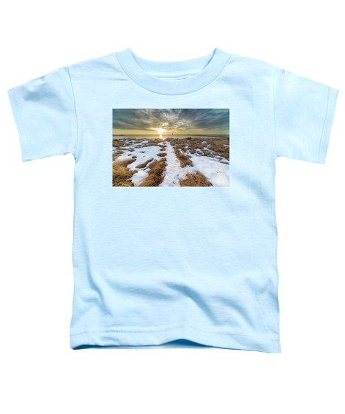 Beach In Frankfort In January Toddler T-Shirt