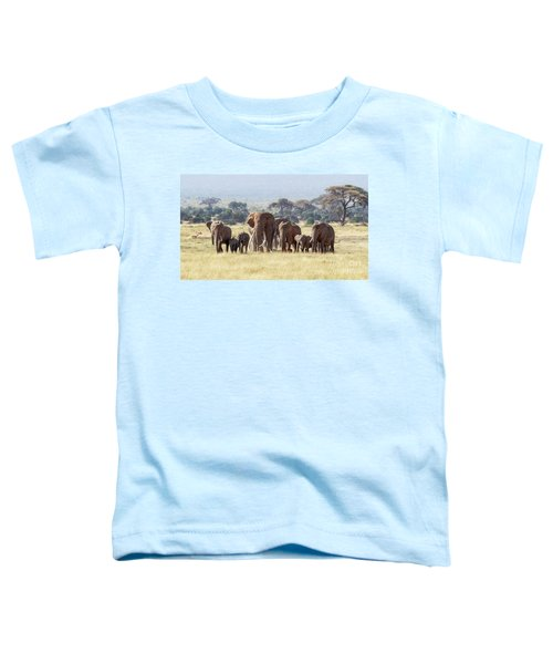 Bull Elephant With A Herd Of Females And Babies In Amboseli, Kenya Toddler T-Shirt