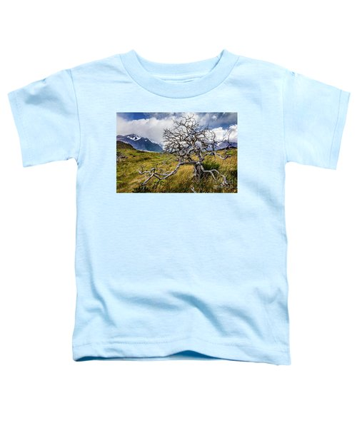 Burnt Tree, Torres Del Paine, Chile Toddler T-Shirt