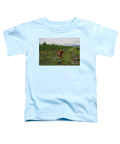 Canelo And The Watermelon Toddler T-Shirt