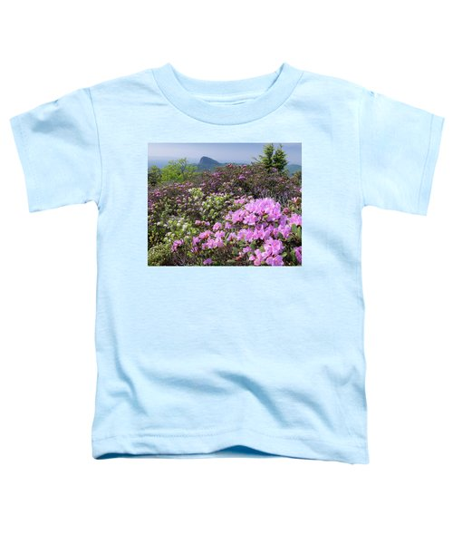 Catawba Rhododendron Table Rock  Toddler T-Shirt