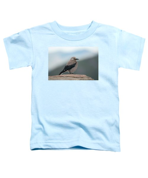 Clarks Nutcracker In The Wild Toddler T-Shirt