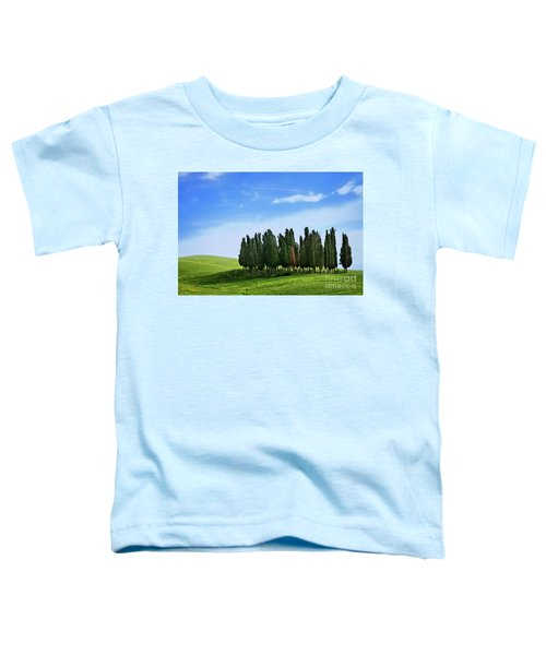 Cypress Stand Toddler T-Shirt