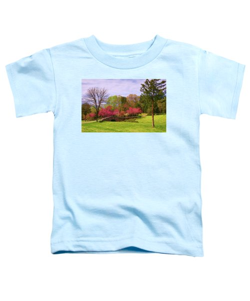 Entrance To Rassawek Vineyard In Columbia Virginia Toddler T-Shirt