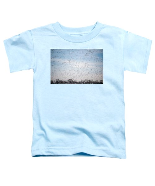 Geese In The Flyway Toddler T-Shirt