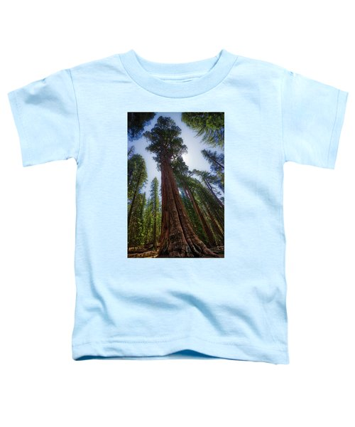Giant Sequoia Tree Toddler T-Shirt