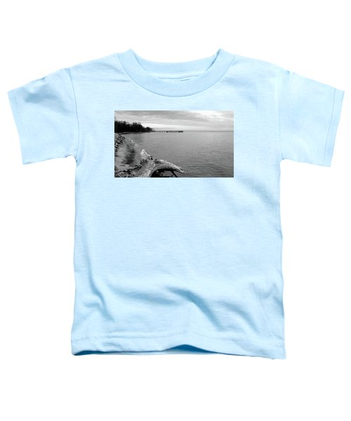 Gray Day On The Bay Toddler T-Shirt