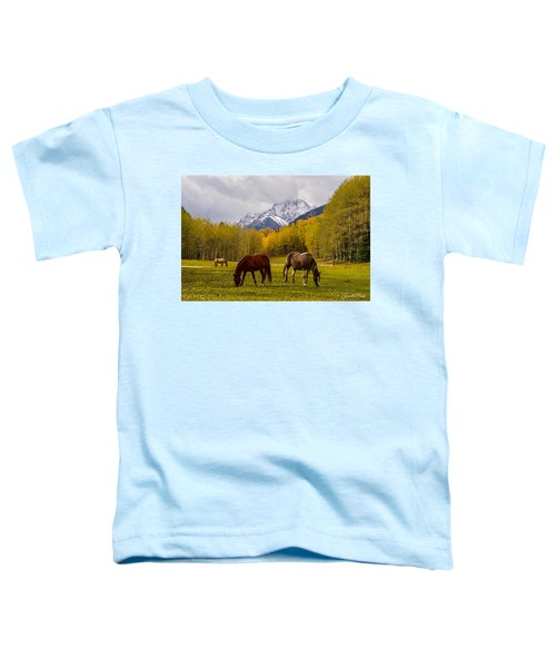 Grazing In Aspen Toddler T-Shirt