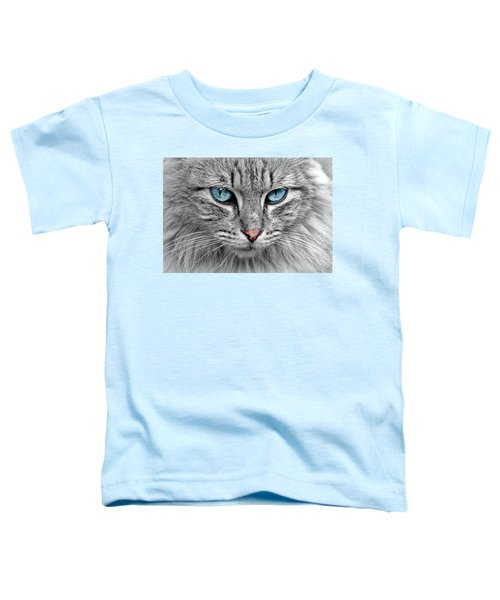 Grey Cat With Blue Eyes Toddler T-Shirt