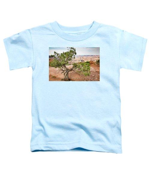 Juniper Over The Canyon Toddler T-Shirt