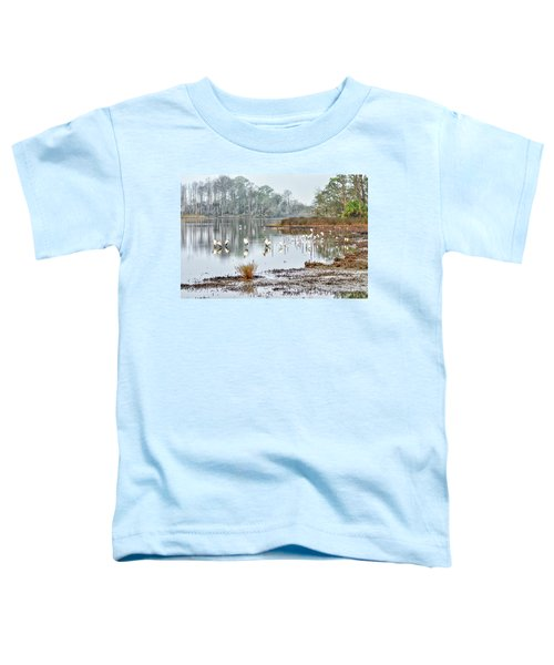 Old Rice Pond Toddler T-Shirt