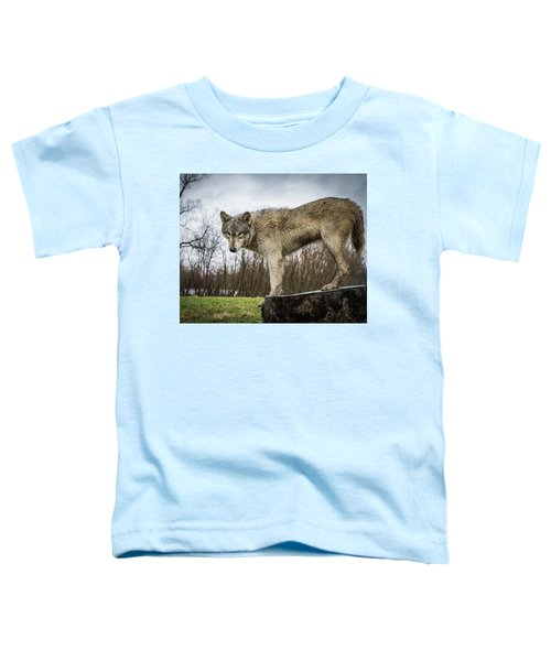 On A Slant Toddler T-Shirt