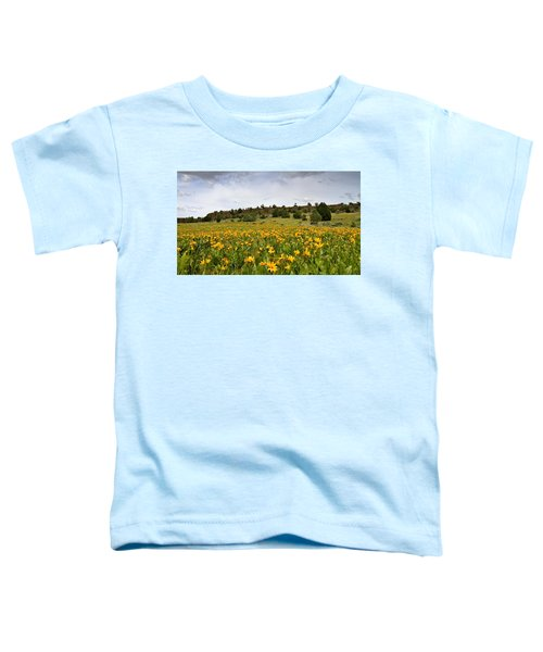 Owyhee Uplands Toddler T-Shirt