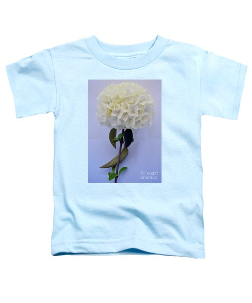 Painted Snowball Toddler T-Shirt
