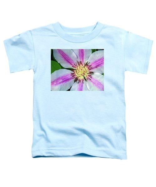 Pink Striped Clematis Close Up Toddler T-Shirt