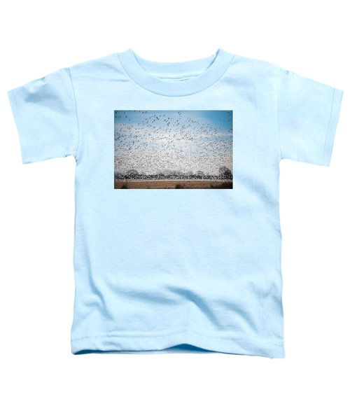 Resting On The Flyway Toddler T-Shirt