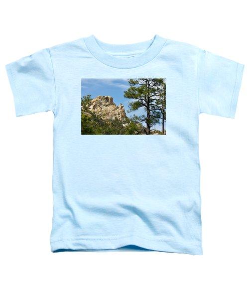 Rocky Peak Toddler T-Shirt