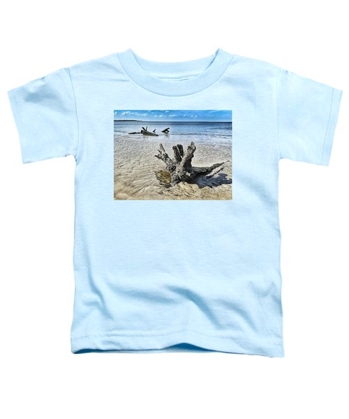 Sculpted By The Sea Toddler T-Shirt