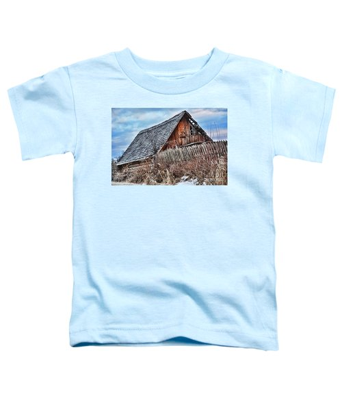 Slippery Slope Toddler T-Shirt