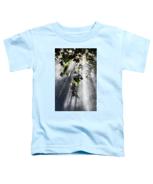 Smoke Gets In Your Skies Toddler T-Shirt
