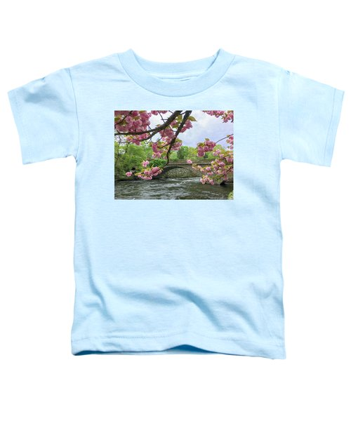 Spring Time In Windham  Toddler T-Shirt