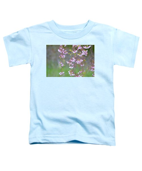 Weeping Cherry Blossoms Toddler T-Shirt