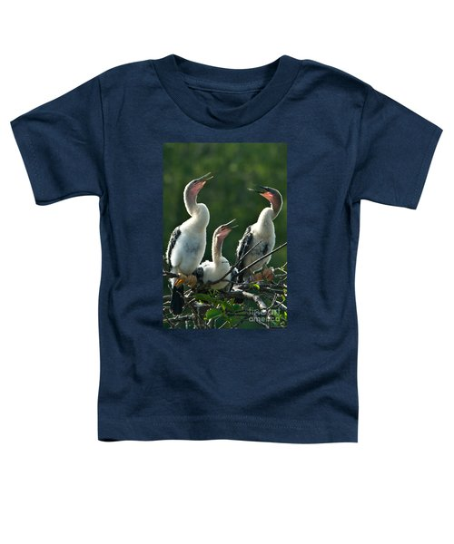 Anhinga Chicks Toddler T-Shirt by Mark Newman