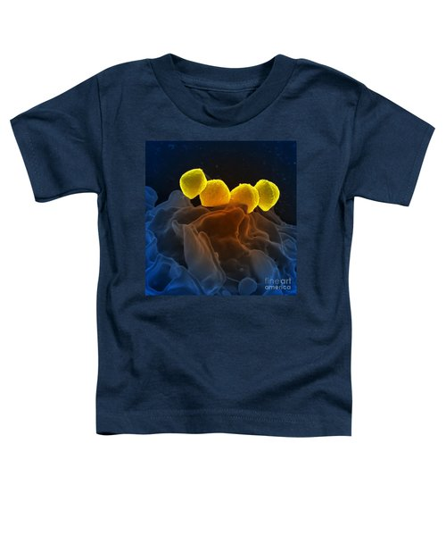 Streptococcus Pyogenes Bacteria Sem Toddler T-Shirt