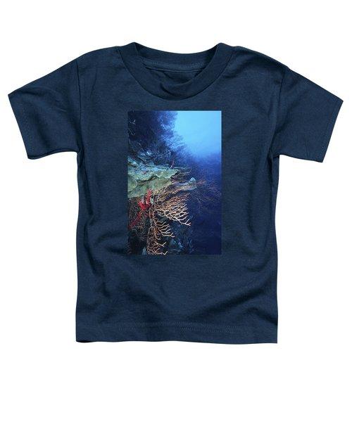 A Peaceful Place Toddler T-Shirt