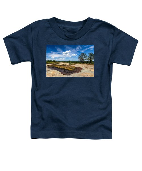 Arabia Mountain Preserve Toddler T-Shirt