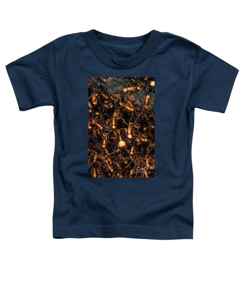 Army Ant Bivouac Site Toddler T-Shirt by Gregory G. Dimijian, M.D.