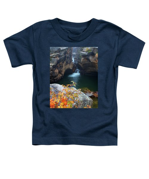 Autumn At The Grotto Toddler T-Shirt