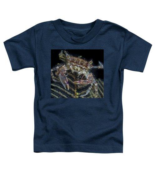 Crab Staring At You Toddler T-Shirt