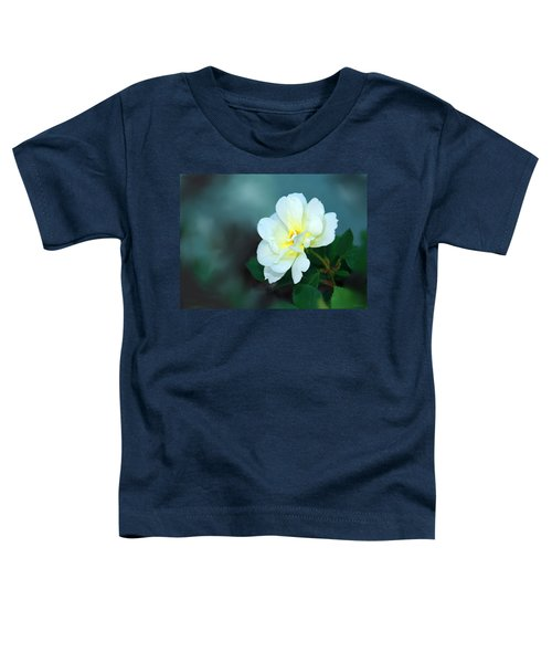 Apple Blossom Time Toddler T-Shirt