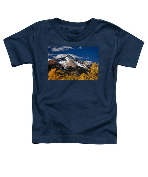 Golden Afternoon Toddler T-Shirt