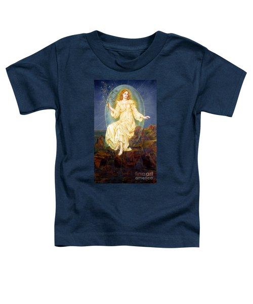 Lux In Tenebris Toddler T-Shirt