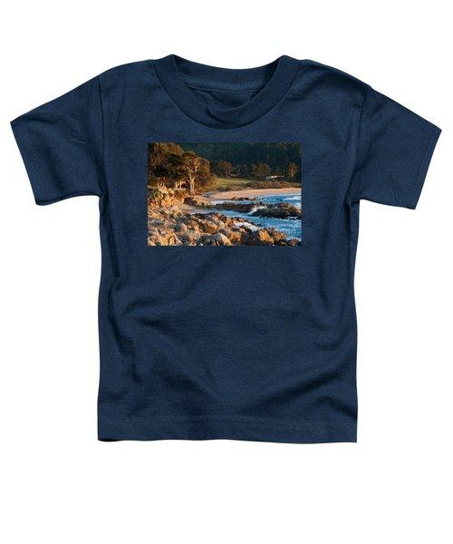 Monastery Beach In Carmel California Toddler T-Shirt