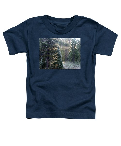 Morning Rays Toddler T-Shirt