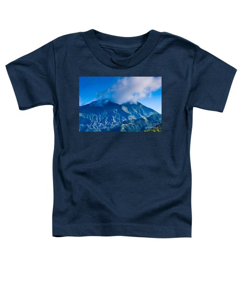 Mount Wai'ale'ale  Toddler T-Shirt