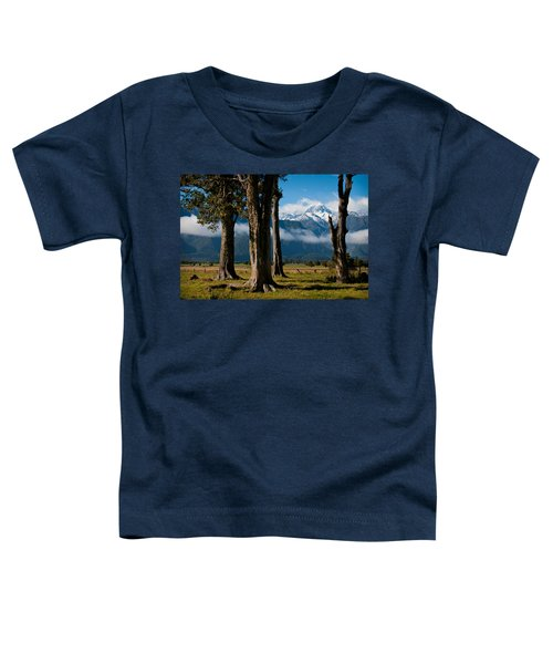 Mt Cook Through Trees Toddler T-Shirt