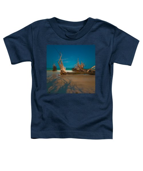 Roots 1 Toddler T-Shirt
