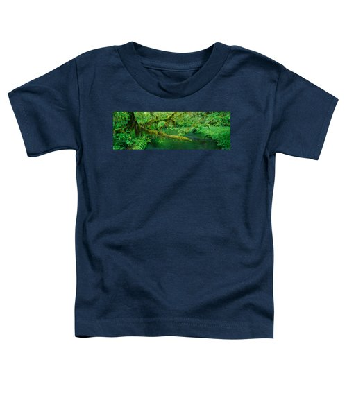 Stream Flowing Through A Rainforest Toddler T-Shirt by Panoramic Images