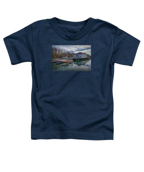 Usgs Castle Hill Station Toddler T-Shirt